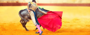 Ecommerce in Spain: bullfighter