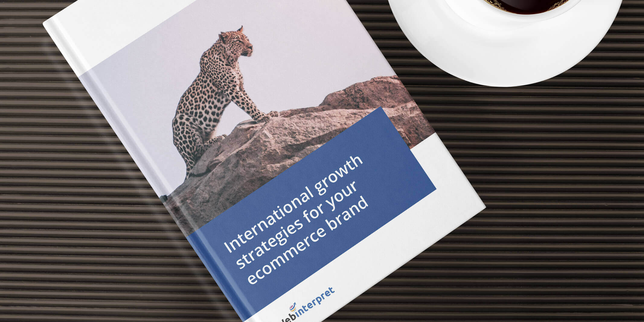 International growth strategies ecommerce guide against a black background
